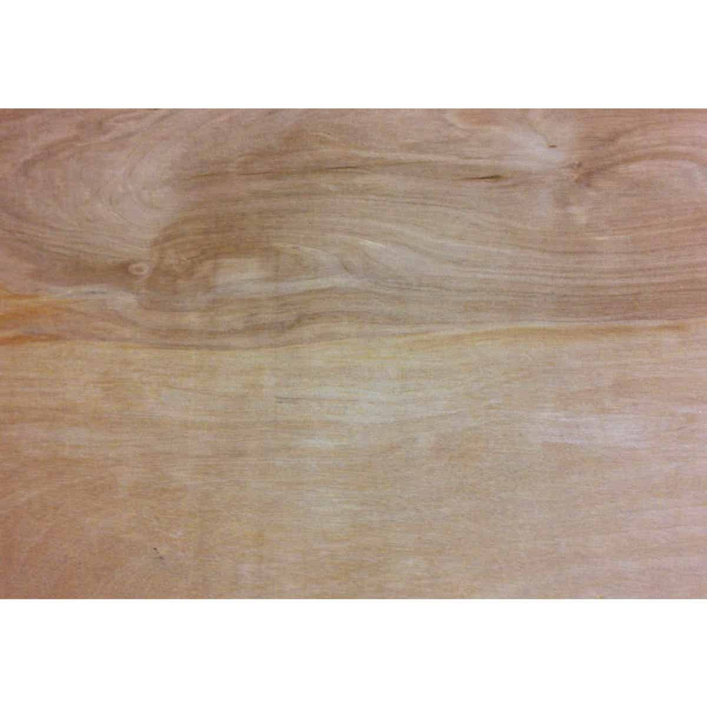 Universal Forest Products 3/8 In. x 24 In. x 48 In. Birch Plywood Panel Image 1