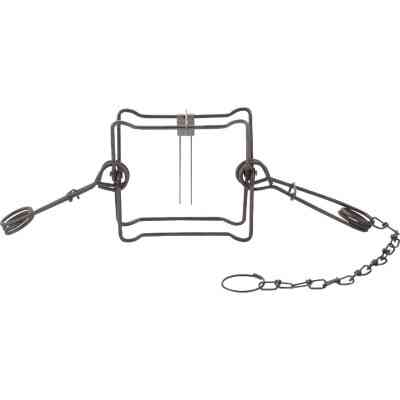 Duke Traps 7 In. Jaw Spread Steel Body Gripping Fisher, Groundhog, & Raccoon Trap